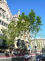 Casa Batlló el dia de sant Jordi P1440113.jpg