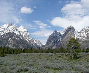 Cascade Canyon - Cascade Canyon with the Cathedral Group at left from Jackson Hole