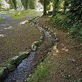 Cascade in het park - Arnhem - 20375429 - RCE.jpg