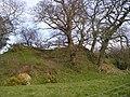 Castell Pistog - geograph.org.uk - 741614.jpg
