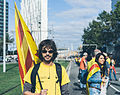 Catalan Way seen by Wiros 03.jpg