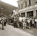 Cattle Fortepan 83953.jpg