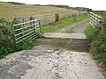 Cattle grid at Dally - geograph.org.uk - 1625269.jpg