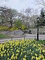 Central Park, New York, NY, USA - panoramio (168).jpg