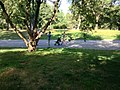 Central Park, New York, NY, USA - panoramio (34).jpg