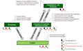 Change Management schema governo programma.PNG
