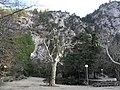 Chapelle Notre-Dame du Groseau, Quelle am Mont Ventoux - panoramio.jpg