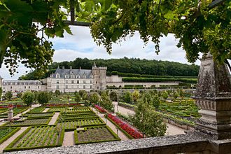 Château de Villandry - Château de Villandry