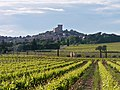 Chateauneuf du Pape, Southern France (7179088644).jpg