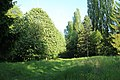 Chemin de Champfailly à Chevreuse le 21 mai 2015 - 11.jpg