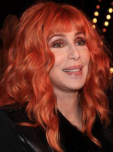 Cher by Ian Smith.jpg