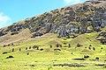 Chile-03027 - Rapa Nui National Park (49072873766).jpg