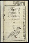 Chinese Materia medica, C17; Birds, White pigeon-dove Wellcome L0039348.jpg