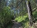 Chodník na hrad Lietava - panoramio.jpg