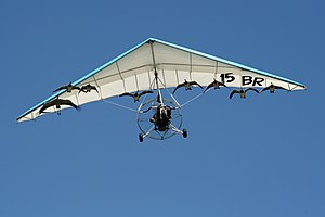 Imprinting (psychology) - Imprinted geese and cranes flying with an ultralight aircraft