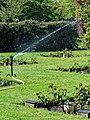 City of London Cemetery Memorial Garden sprinkler 2.jpg