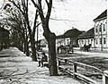 City park bela crkva 1895.jpg