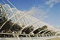 Ciutat de les Arts i les Ciències, València, Valencia, Spain - panoramio (25).jpg