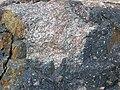Clast-rich impact pseudotachylite (Sudbury Breccia, Paleoproterozoic, 1.85 Ga; Windy Lake Northwest roadcut, Sudbury Impact Structure, Ontario, Canada) 48 (46968783964).jpg