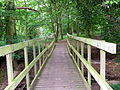 Clavering Essex Simon's Wood footbridge.JPG