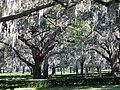 Clearwater,Florida,USA. - panoramio (54).jpg