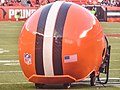 Cleveland Browns vs. Buffalo Bills (20768143472).jpg