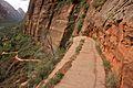 Climbing up to Angels Landing (Zion National Park) (3444013182).jpg