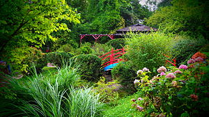 Cluj - Botanic Garden (22201474100)