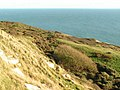 Coastal scenery south of Langton Matravers - geograph.org.uk - 268639.jpg