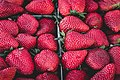 Collection of strawberry (Unsplash).jpg
