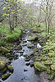 Combes Brook - geograph.org.uk - 402777.jpg