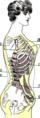 Comment le corset cambre deforme le corps - 2.png