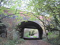 Copthall Railway Walk bridge.JPG