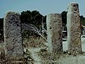 Corse-Du-Sud Cauria Megalithes - panoramio.jpg