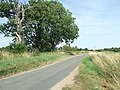 Country Road - geograph.org.uk - 1456765.jpg