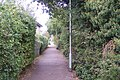 Crab and Winkle Way Cyclepath leading towards Whitstable - geograph.org.uk - 1520817.jpg