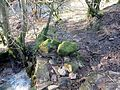Craigmill access lane and drystone dyking.JPG