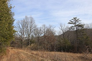 Crawfish Valley (Bear Creek) Protected natural area in Virginia, United States