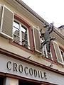 Crocodile (3998111189).jpg