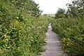 Cycleway 27 heading towards Slade Reservoir - geograph.org.uk - 721427.jpg