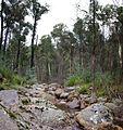 Dandongadale River, en route to Mt Cobbler-Lake Cobbler. - panoramio.jpg