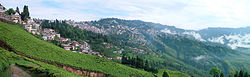 Panoramic view of Darjeeling.