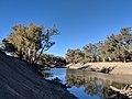 Darling River at Toorale NP.jpg