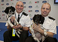 Day 70 - Crufts 2013 (8549053118).jpg