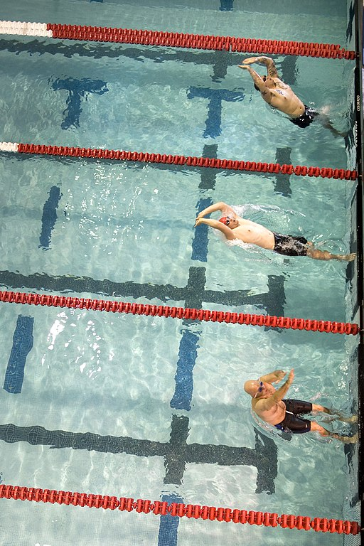 essay about swimming competition