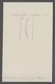 Dentalium nebulosum - - Print - Iconographia Zoologica - Special Collections University of Amsterdam - UBAINV0274 081 10 0008.tif