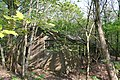 Derelict Nissen hut in Twemlows Big Wood, another view - geograph.org.uk - 793001.jpg
