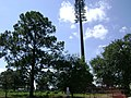 Disguised Cell Tower in Sunset Hill Cemetery.jpg