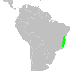 Distribution.ceasalpinia.echinata-2.png