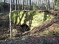 Disused quarry workings at Warminster Plantation, East Knoyle - geograph.org.uk - 360172.jpg